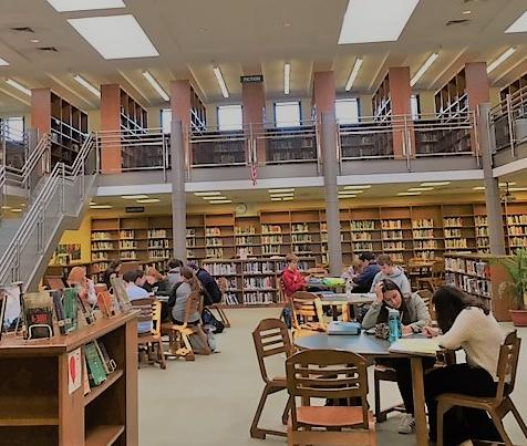 Students sitting in the campus library